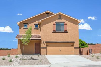 Albuquerque Single Family Home For Sale: 10915 Del Carmen Street NW
