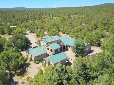Tijeras, Cedar Crest, Sandia Park, Edgewood, Moriarty, Stanley Single Family Home For Sale: 29 Upper Juan Tomas Road
