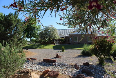 Valencia County Single Family Home For Sale: 17 Valle Lindo Court