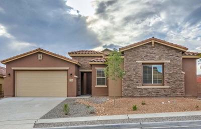 Rio Rancho Single Family Home For Sale: 733 Sierra Verde Way NE