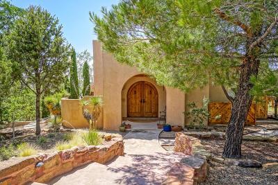 Placitas Single Family Home For Sale: 14 Las Brisas Loop