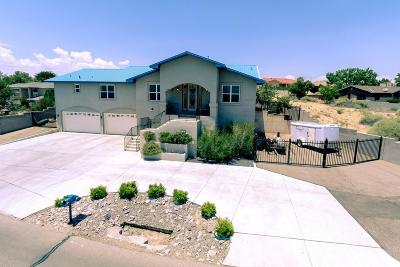 Valencia County Single Family Home For Sale: 1118 Valley View Drive SW