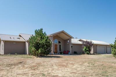Tijeras, Cedar Crest, Sandia Park, Edgewood, Moriarty, Stanley Single Family Home For Sale: 19 Sweenhart Drive