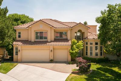 Albuquerque Single Family Home For Sale: 11408 Fairington Way NE