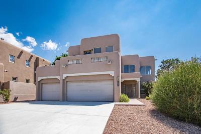 Single Family Home For Sale: 12800 Northern Sky Avenue NE