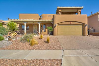 Albuquerque Single Family Home For Sale: 9849 Boulder Street NW
