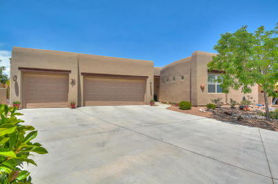 Rio Rancho Single Family Home For Sale: 2505 Vista Manzano Loop NE