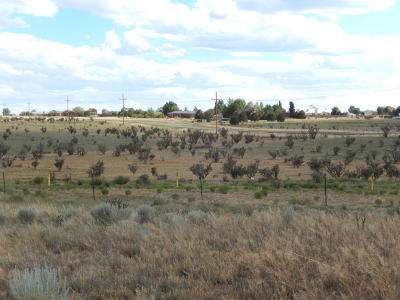Edgewood NM Residential Lots & Land For Sale: $40,000