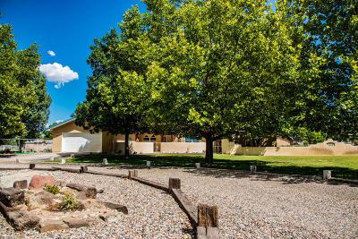 Valencia County Single Family Home For Sale: 260 Del Norte Court