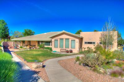 Sandia Heights Single Family Home For Sale: 513 Roadrunner Lane NE