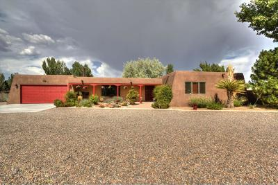 Valencia County Single Family Home For Sale: 27 Riverside Drive