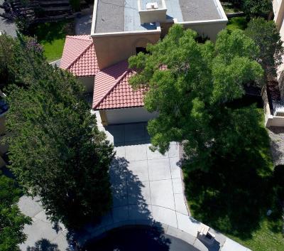 Albuquerque Single Family Home For Sale: 9516 Callaway Circle NE
