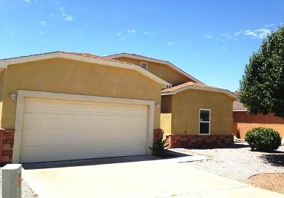 Las Cruces Single Family Home For Sale: 4696 Camino Dos Vidas