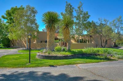 Albuquerque, Bernalillo, Corrales, Placitas, Rio Rancho Single Family Home For Sale: 30 Camino De La Paloma