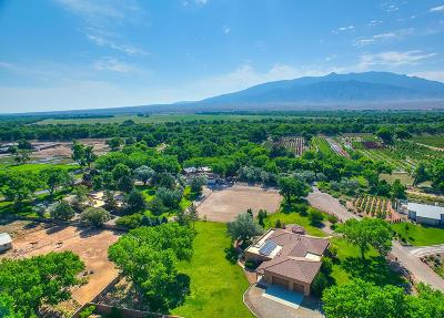 Albuquerque, Bernalillo, Corrales, Placitas, Rio Rancho Single Family Home For Sale: Corrales Del Norte