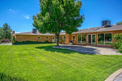 Albuquerque Single Family Home For Sale: 12401 Pino Avenue NE