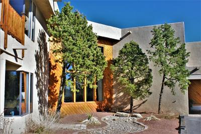 Albuquerque Single Family Home For Sale: San Rafael Avenue NE
