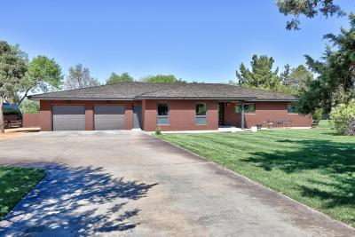 Los Ranchos Single Family Home For Sale: 4611 Rio Grande Lane NW