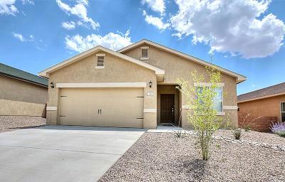 Albuquerque Single Family Home For Sale: 10912 Topacio Street NW