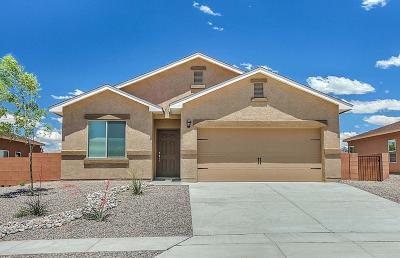 Albuquerque Single Family Home For Sale: 10916 Topacio Street NW