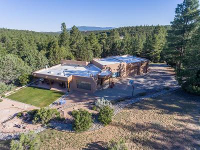 Tijeras, Cedar Crest, Sandia Park, Edgewood, Moriarty, Stanley Single Family Home For Sale: 20 Valle Lindo Road