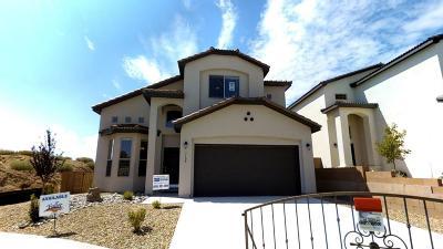 Albuquerque NM Single Family Home For Sale: $242,990