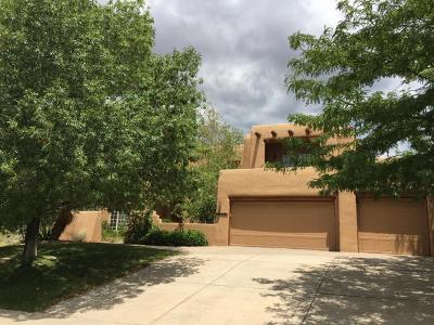 Albuquerque Single Family Home For Sale: 12251 Mountain Haze Road NE