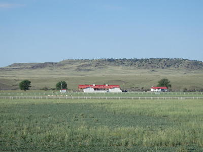 Farm & Ranch For Sale: High Hope Ranch