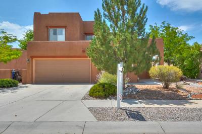 Albuquerque Single Family Home For Sale: 1012 Calle Corvo NE