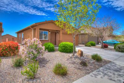 Rio Rancho Single Family Home For Sale: 3747 Clear Creek Road NE