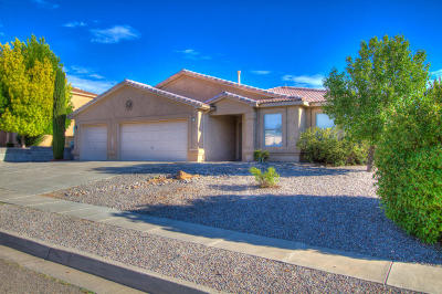 Rio Rancho Single Family Home For Sale: 6511 Sophia Hills Court NE