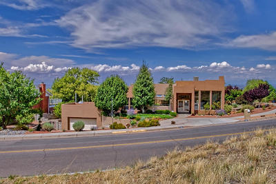 Albuquerque Single Family Home For Sale: 3201 Camino De La Sierra NE