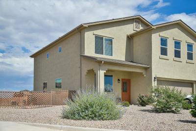 Rio Rancho Single Family Home For Sale: 4032 Desert Willow Drive NE