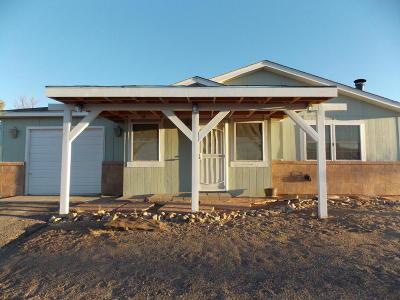 Rio Rancho Single Family Home For Sale: 685 Vancouver Road SE