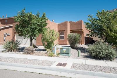 Albuquerque Single Family Home For Sale: 7319 Hearthstone Road