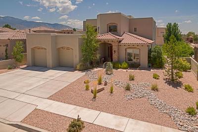 Albuquerque Single Family Home For Sale: 9800 Datura Trail