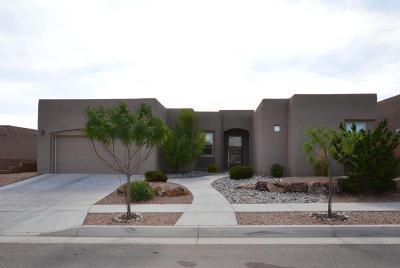 Albuquerque Single Family Home For Sale: 4700 Cayetana Place NW
