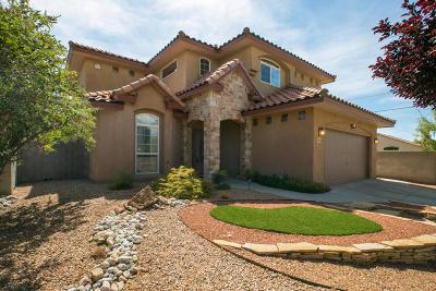 Albuquerque Single Family Home For Sale: 7308 Pebble Stone Place NE