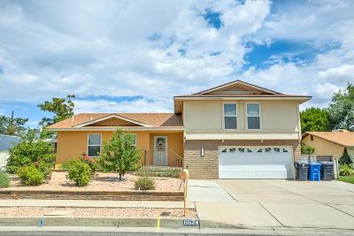Albuquerque Single Family Home For Sale: 6624 Beck Drive