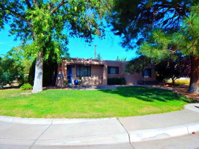 Albuquerque Single Family Home For Sale: 1601 Hendola Drive NE