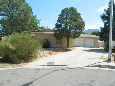 Albuquerque Single Family Home For Sale: 724 Chelwood Park Boulevard NE