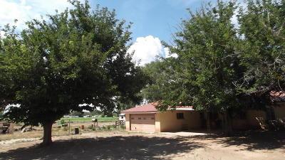 Valencia County Single Family Home For Sale: 202 NE El Cerro Loop NE