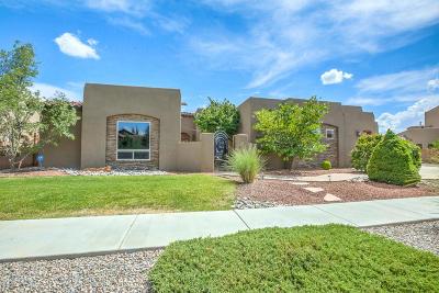 Albuquerque Single Family Home For Sale: 8100 Via Alegre NE