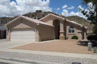 Albuquerque Single Family Home For Sale: 9405 Jill Patricia Street NW