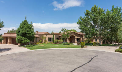 Albuquerque Single Family Home For Sale: 8825 Gypsy Drive NE