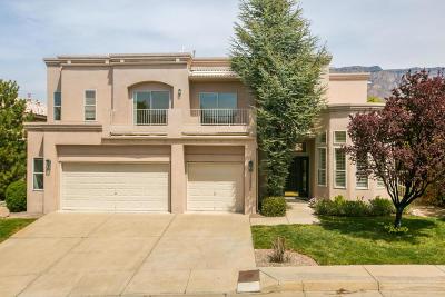 Albuquerque Single Family Home For Sale: 11525 Sky Valley Way NE