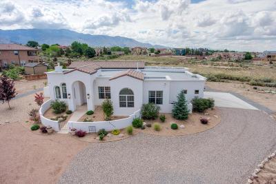 Single Family Home For Sale: 10650 Palomas Avenue NE