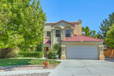 Albuquerque Single Family Home For Sale: 4416 River Hill Drive NW