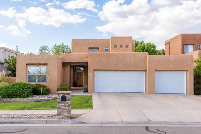 Albuquerque Single Family Home For Sale: 9101 Santa Lucia Avenue NE