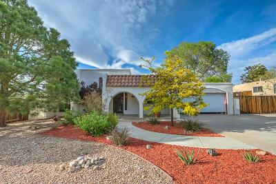 Bernalillo County Single Family Home For Sale: 713 Rio Arriba Avenue SE